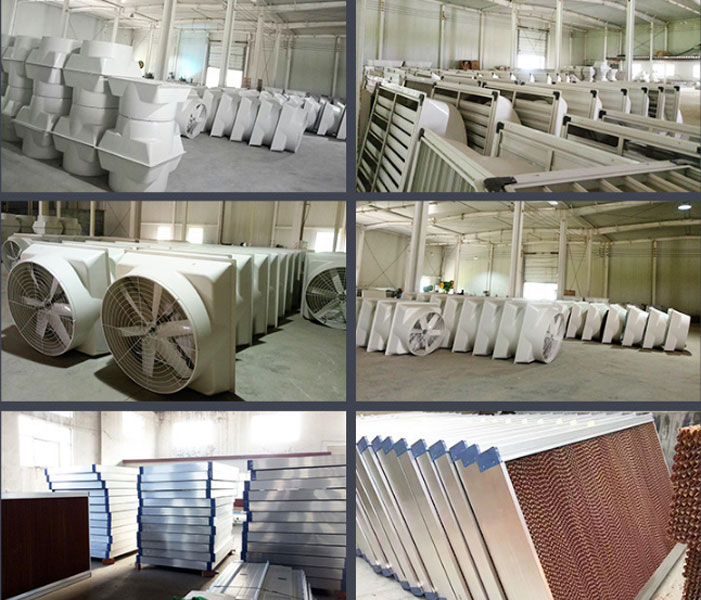 Quạt hút công nghiệp dạng loa - Composite